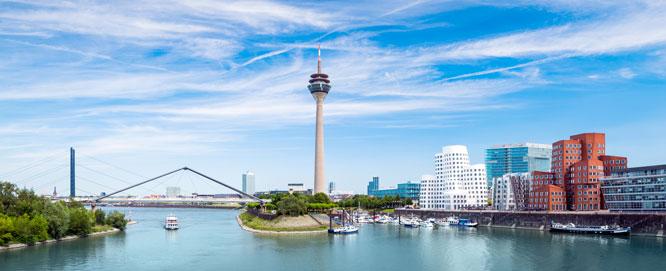 Düsseldorf: Beste Freunde gesucht